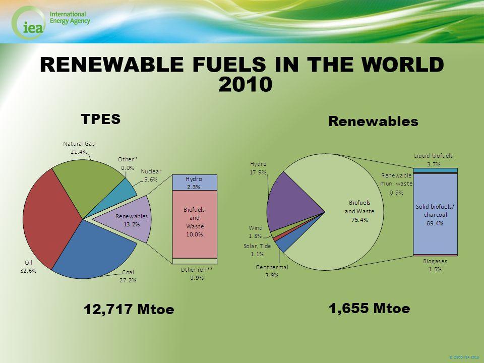 © OECD/IEA 2013 RENEWABLE FUELS IN THE WORLD 2010 TPES Renewables 12,717 Mtoe 1,655 Mtoe