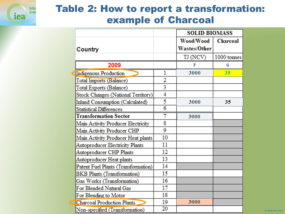 © OECD/IEA 2013 35 3000 35 3000 Table 2: How to report a transformation: example of Charcoal