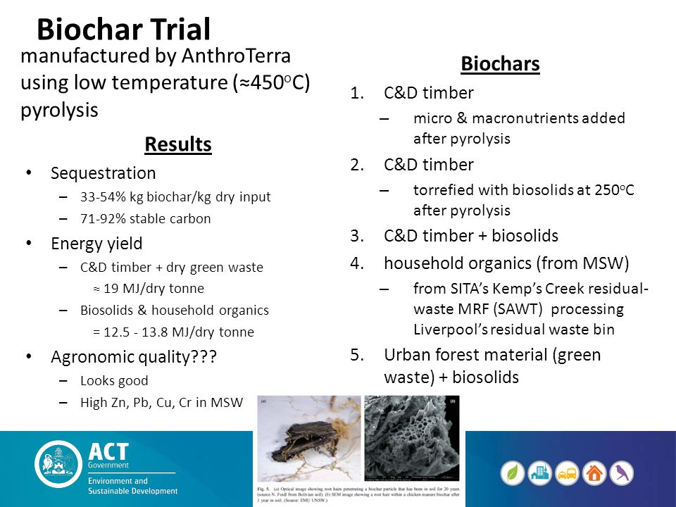Biochar Trial manufactured by AnthroTerra using low temperature (≈450 o C) pyrolysis Biochars 1.C&D timber – micro & macronutrients added after pyroly
