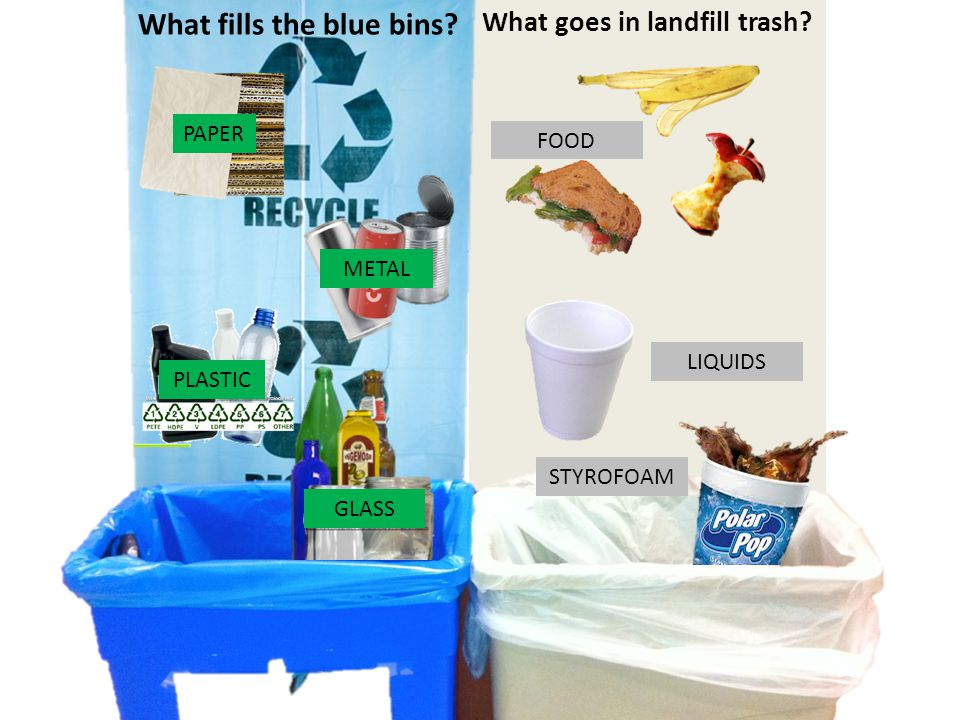 What fills the blue bins. What goes in landfill trash.