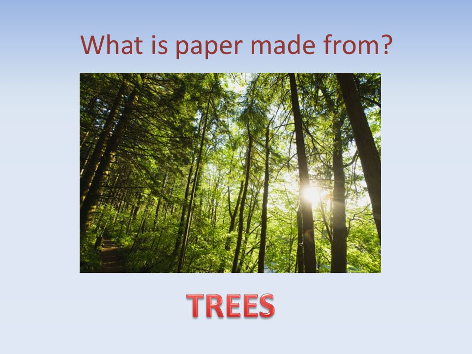 What is paper made from