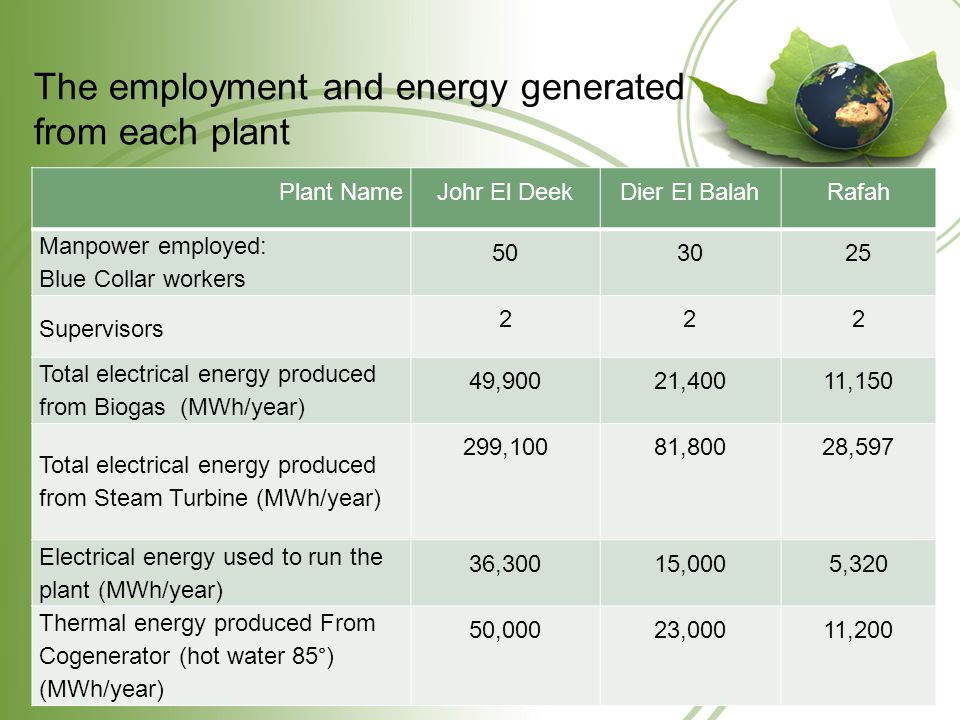 The employment and energy generated from each plant Plant NameJohr El DeekDier El BalahRafah Manpower employed: Blue Collar workers 503025 Supervisors