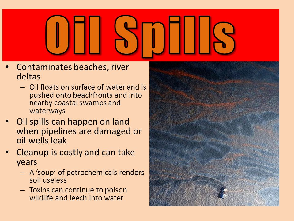 Contaminates beaches, river deltas – Oil floats on surface of water and is pushed onto beachfronts and into nearby coastal swamps and waterways Oil spills can happen on land when pipelines are damaged or oil wells leak Cleanup is costly and can take years – A 'soup' of petrochemicals renders soil useless – Toxins can continue to poison wildlife and leech into water