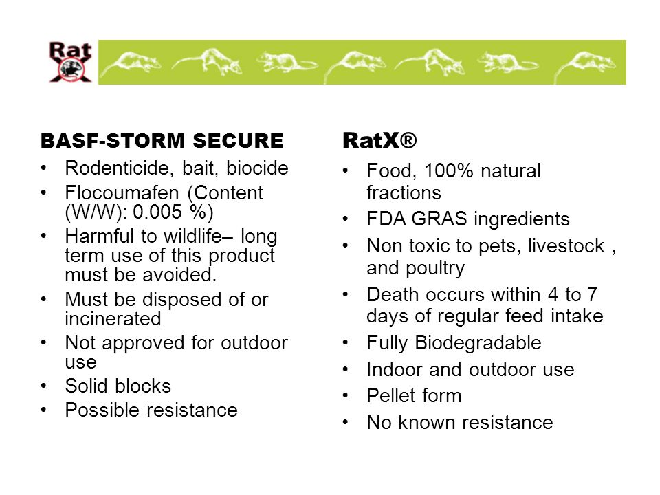 BASF-STORM SECURE Rodenticide, bait, biocide Flocoumafen (Content (W/W): 0.005 %) Harmful to wildlife– long term use of this product must be avoided.