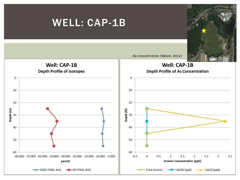 WELL: CAP-1B