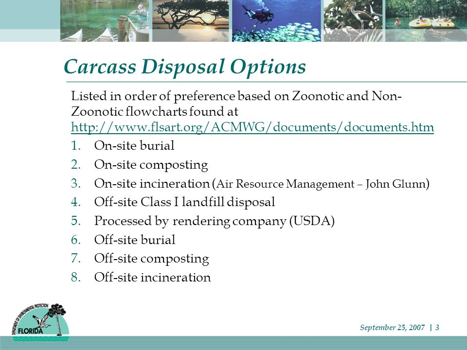 Carcass Disposal Options Listed in order of preference based on Zoonotic and Non- Zoonotic flowcharts found at http://www.flsart.org/ACMWG/documents/documents.htm http://www.flsart.org/ACMWG/documents/documents.htm 1.On-site burial 2.On-site composting 3.On-site incineration ( Air Resource Management – John Glunn ) 4.Off-site Class I landfill disposal 5.Processed by rendering company (USDA) 6.Off-site burial 7.Off-site composting 8.Off-site incineration September 25, 2007 | 3