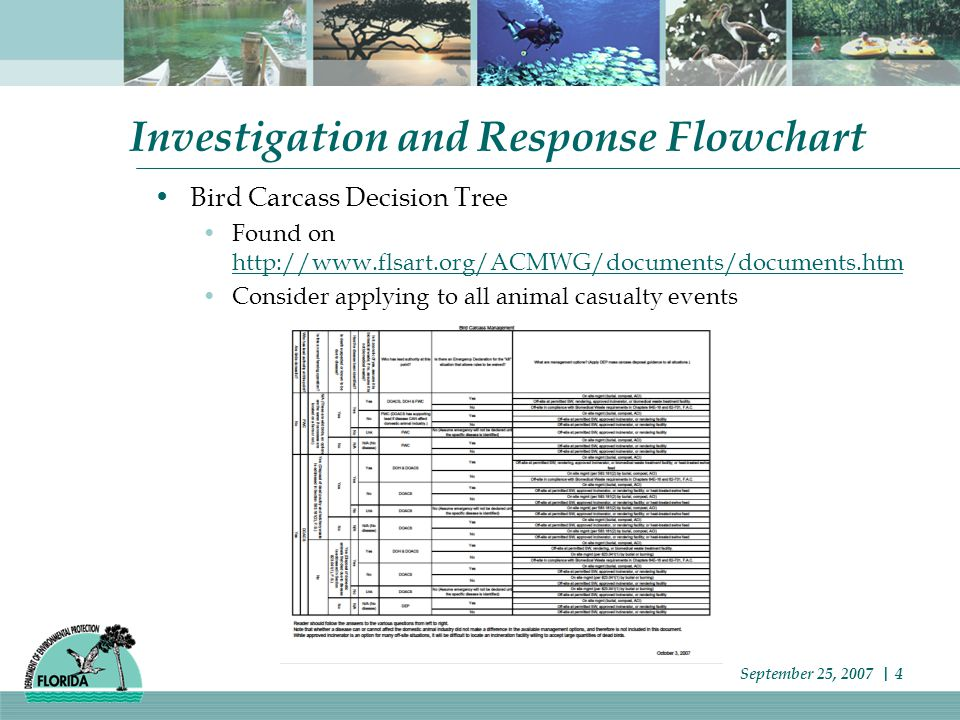 Investigation and Response Flowchart Bird Carcass Decision Tree Found on http://www.flsart.org/ACMWG/documents/documents.htm http://www.flsart.org/ACMWG/documents/documents.htm Consider applying to all animal casualty events September 25, 2007 | 4