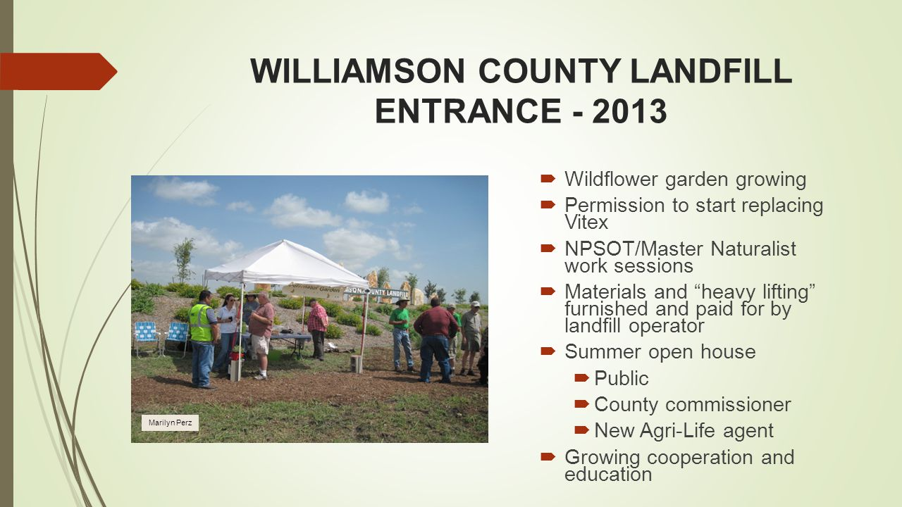 WILLIAMSON COUNTY LANDFILL ENTRANCE - 2013  Wildflower garden growing  Permission to start replacing Vitex  NPSOT/Master Naturalist work sessions  Materials and heavy lifting furnished and paid for by landfill operator  Summer open house  Public  County commissioner  New Agri-Life agent  Growing cooperation and education Marilyn Perz