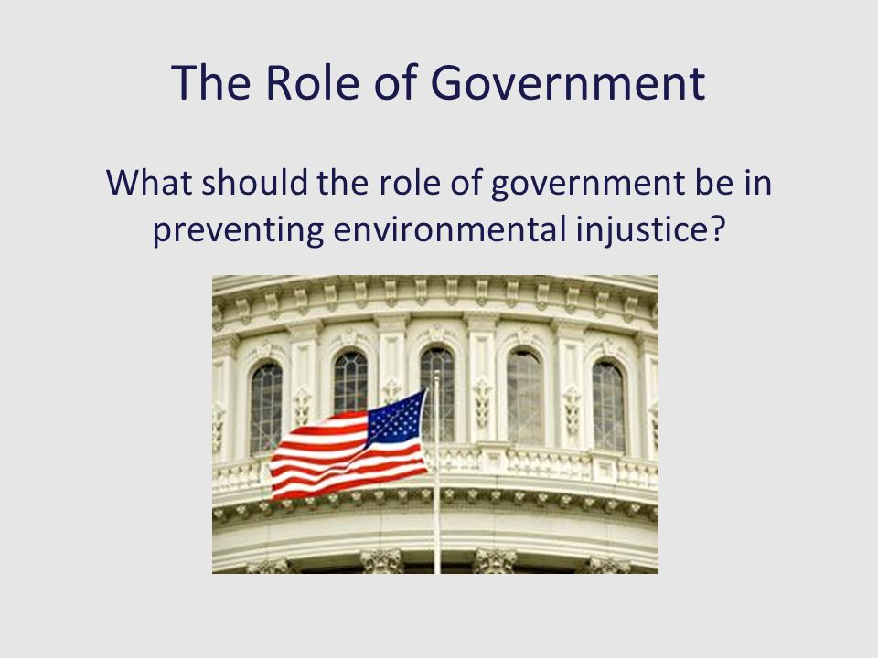 The Role of Government What should the role of government be in preventing environmental injustice?