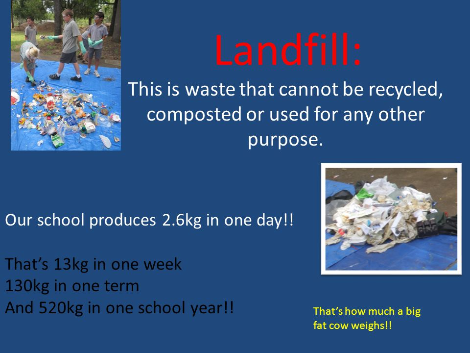 Landfill: Our school produces 2.6kg in one day!.