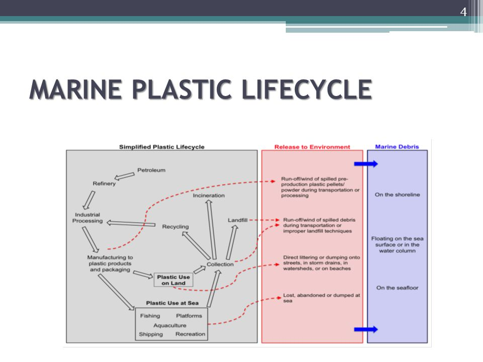 MARINE PLASTIC LIFECYCLE 4