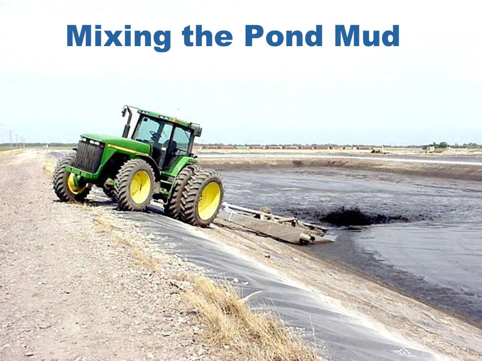 Mixing the Pond Mud