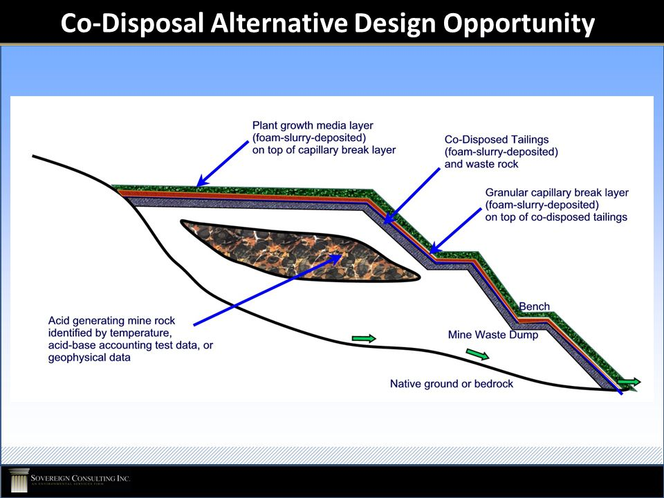 Co-Disposal Alternative Design Opportunity