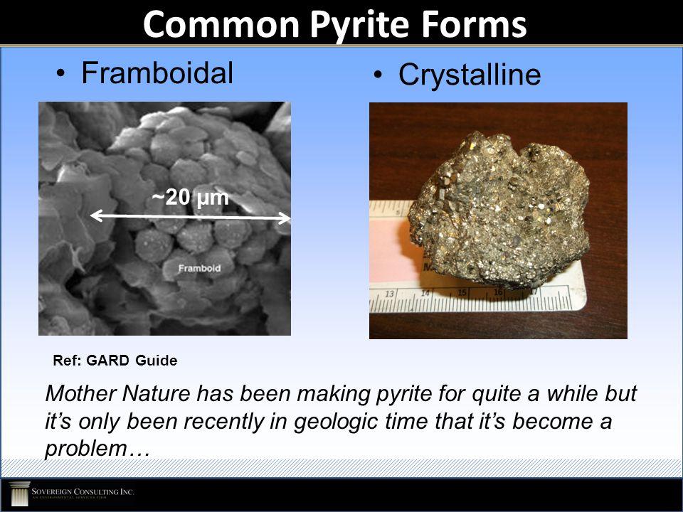 Acid Rock Drainage Tetrahedron Bacteria Water Pyrite Oxidizer (Air, Fe +3 ) Microbial Passivation