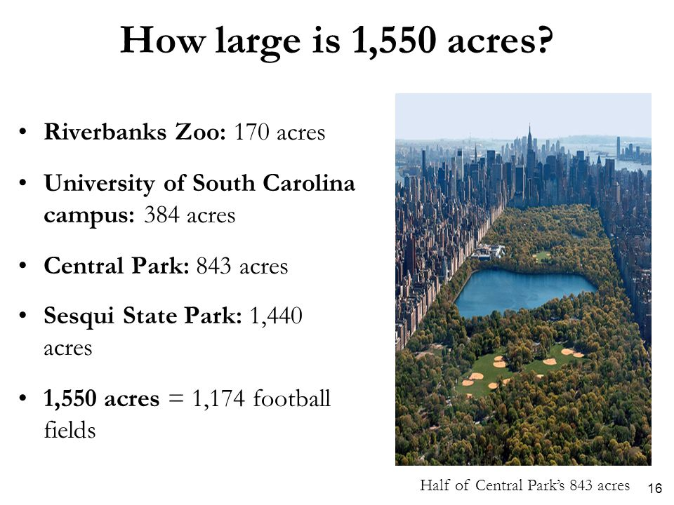 How large is 1,550 acres? Riverbanks Zoo: 170 acres University of South Carolina campus: 384 acres Central Park: 843 acres Sesqui State Park: 1,440 ac