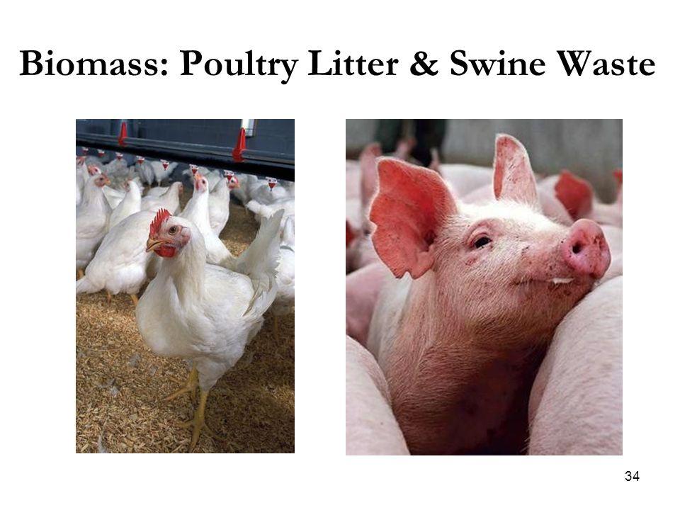 Biomass: Poultry Litter & Swine Waste 34