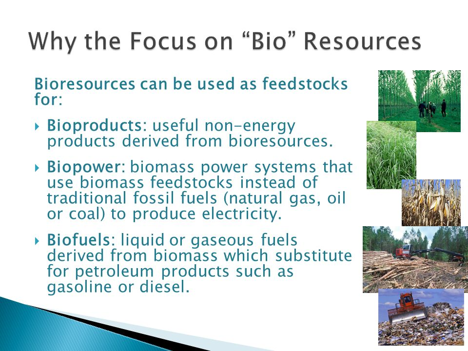 Bioresources can be used as feedstocks for:  Bioproducts: useful non-energy products derived from bioresources.