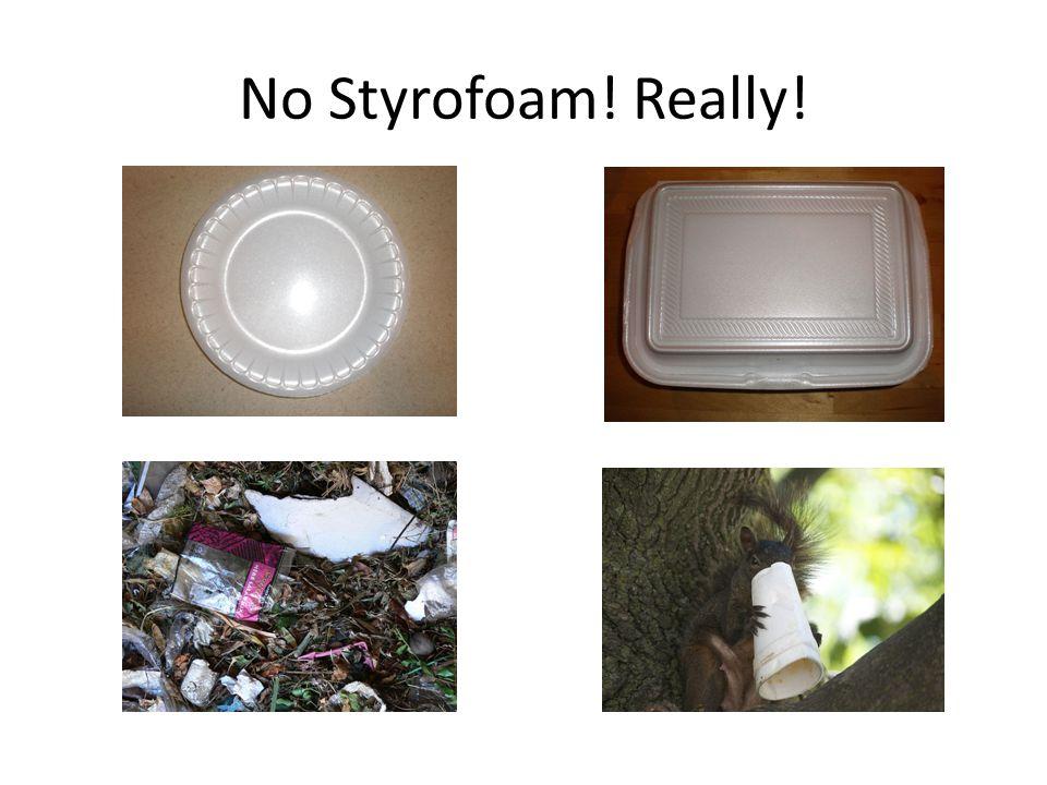 No Styrofoam! Really!