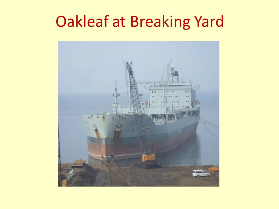 Oakleaf at Breaking Yard