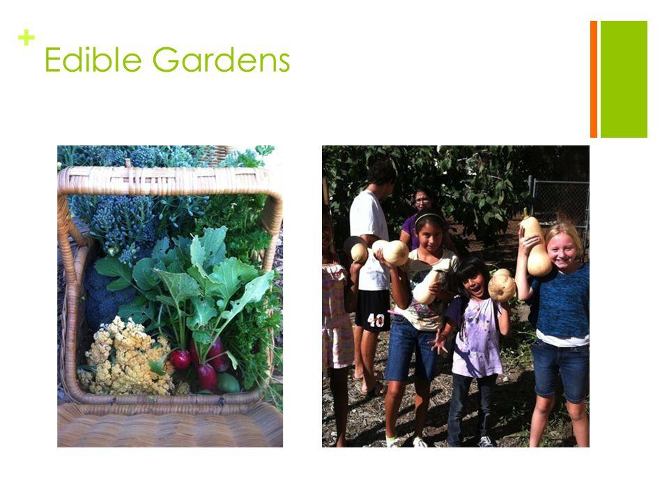 + Edible Gardens