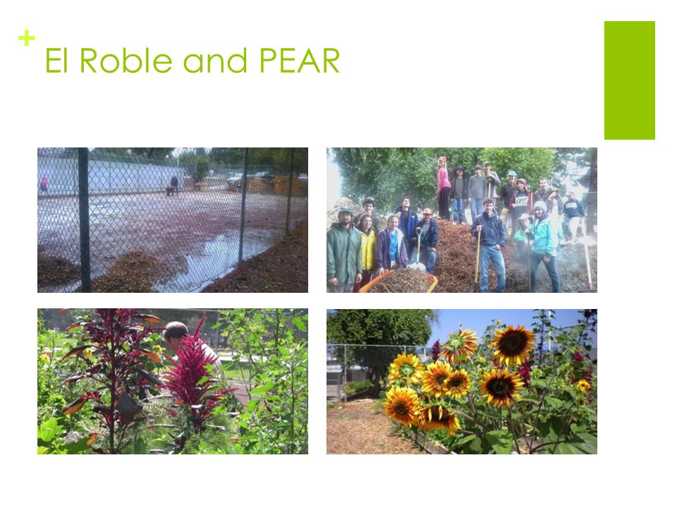 + El Roble and PEAR