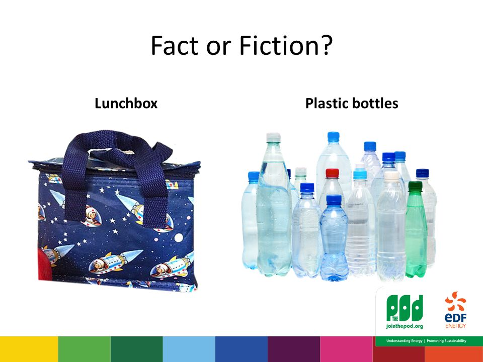 Fact or Fiction LunchboxPlastic bottles