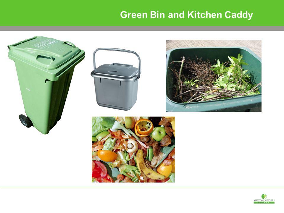 Green Bin and Kitchen Caddy
