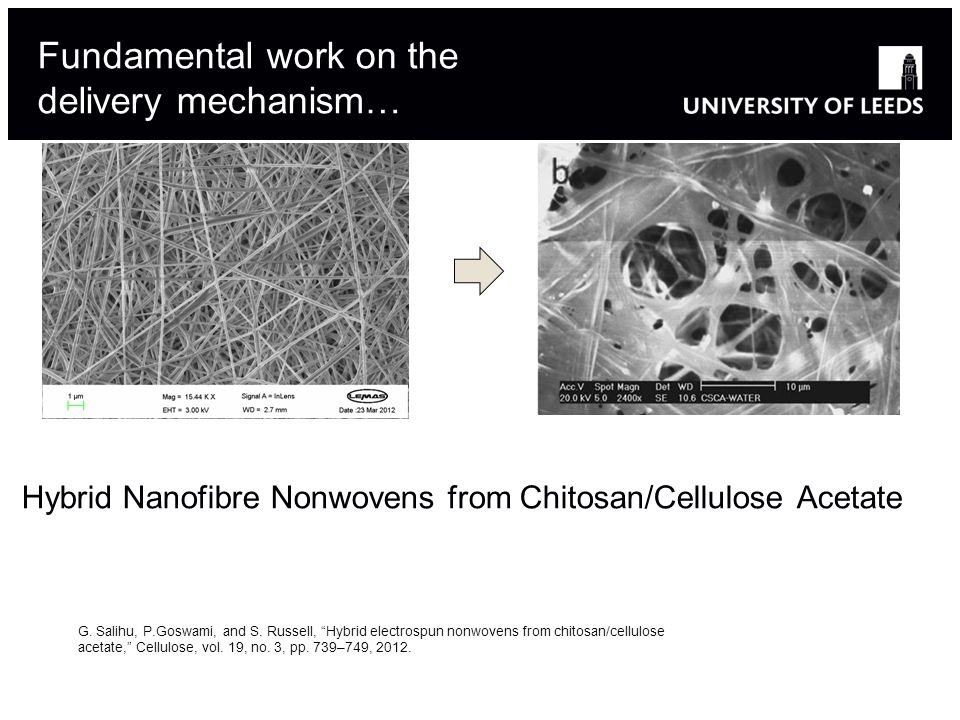 Fundamental work on the delivery mechanism… Hybrid Nanofibre Nonwovens from Chitosan/Cellulose Acetate G.