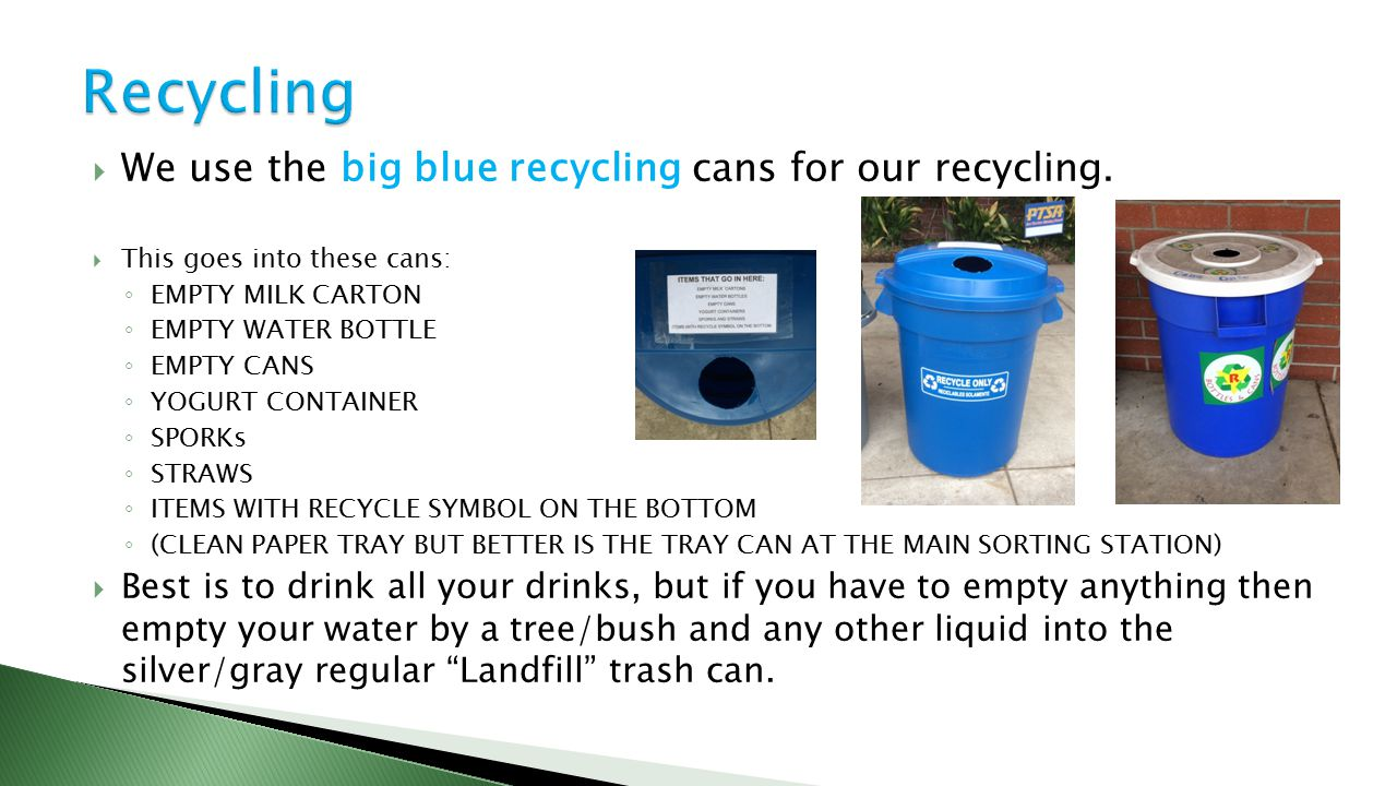  We use the big blue recycling cans for our recycling.