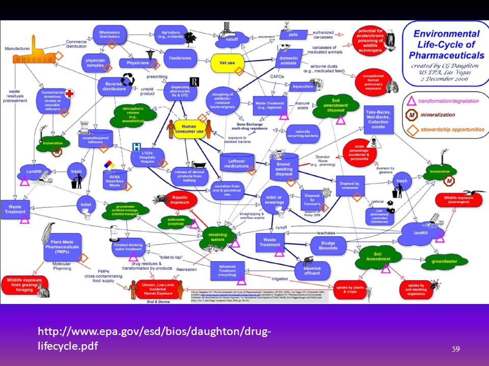 http://www.epa.gov/esd/bios/daughton/drug- lifecycle.pdf 59