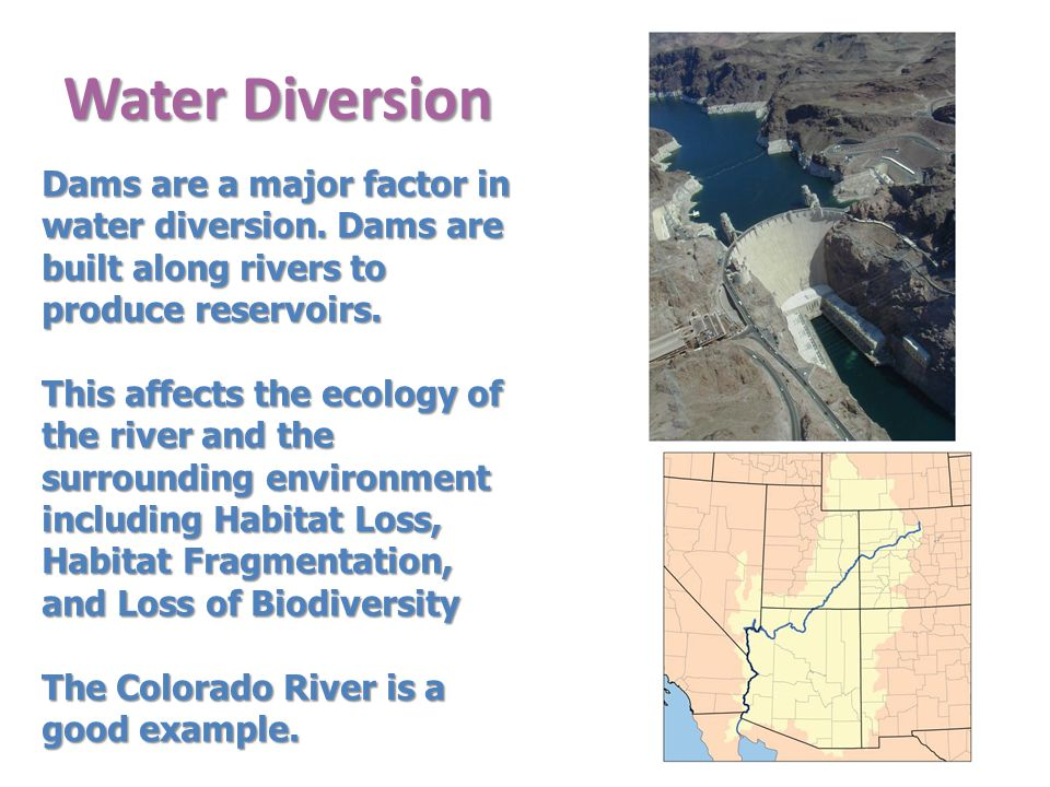Water Diversion Dams are a major factor in water diversion.