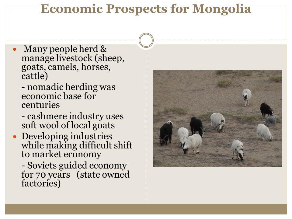 Economic Prospects for Mongolia Many people herd & manage livestock (sheep, goats, camels, horses, cattle) - nomadic herding was economic base for cen