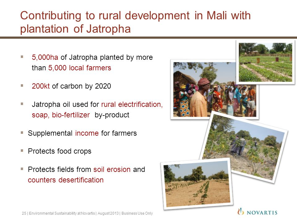 Contributing to rural development in Mali with plantation of Jatropha  5,000ha of Jatropha planted by more than 5,000 local farmers  200kt of carbon