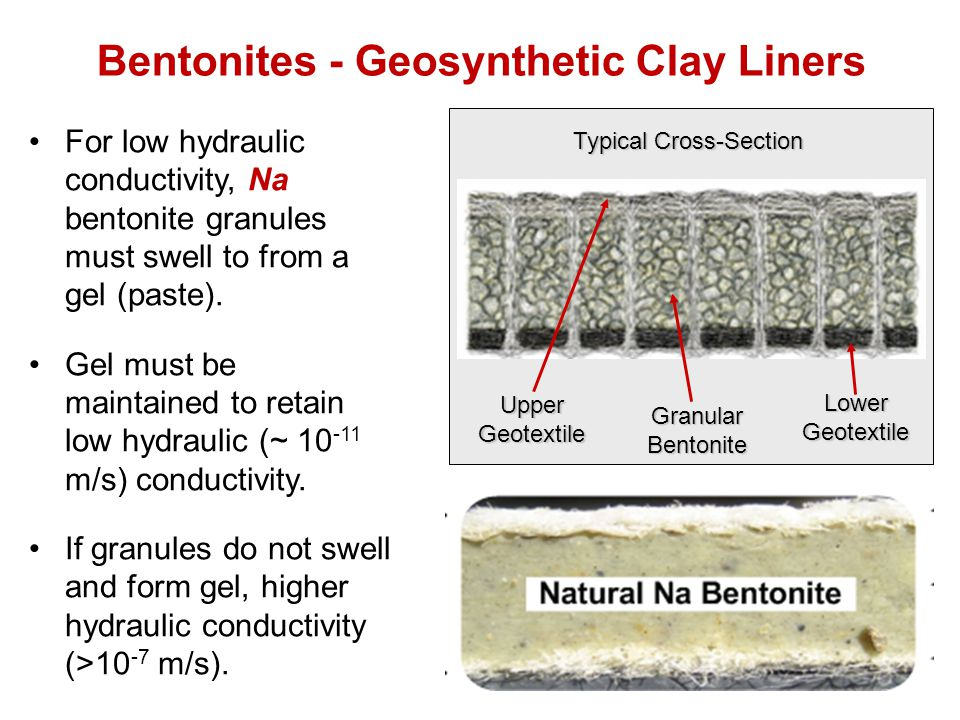 Bentonites - Geosynthetic Clay Liners For low hydraulic conductivity, Na bentonite granules must swell to from a gel (paste).