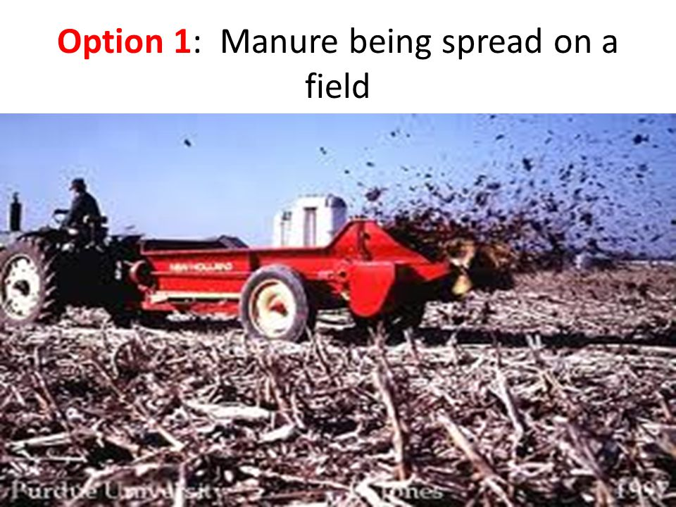 Option 1: Manure being spread on a field