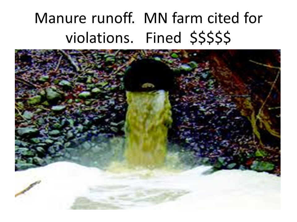 Manure runoff. MN farm cited for violations. Fined $$$$$