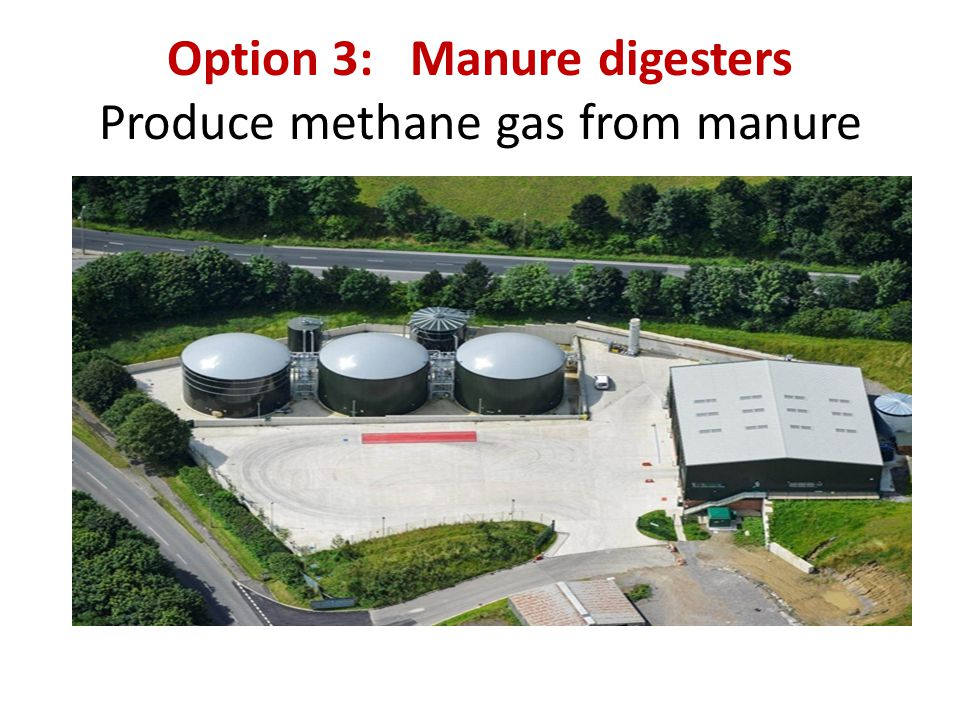 Option 3: Manure digesters Produce methane gas from manure
