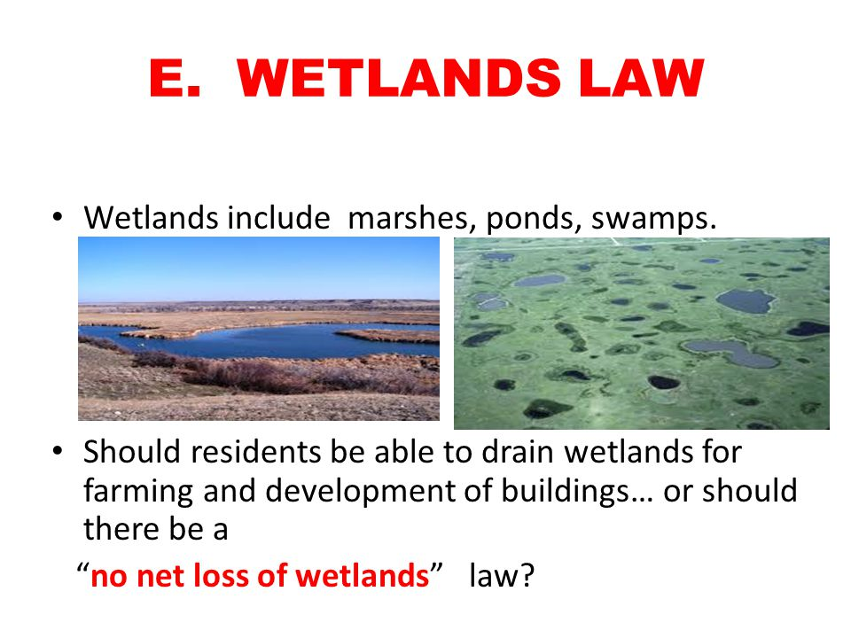 E. WETLANDS LAW Wetlands include marshes, ponds, swamps. Should residents be able to drain wetlands for farming and development of buildings… or shoul