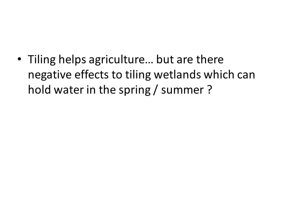 Tiling helps agriculture… but are there negative effects to tiling wetlands which can hold water in the spring / summer