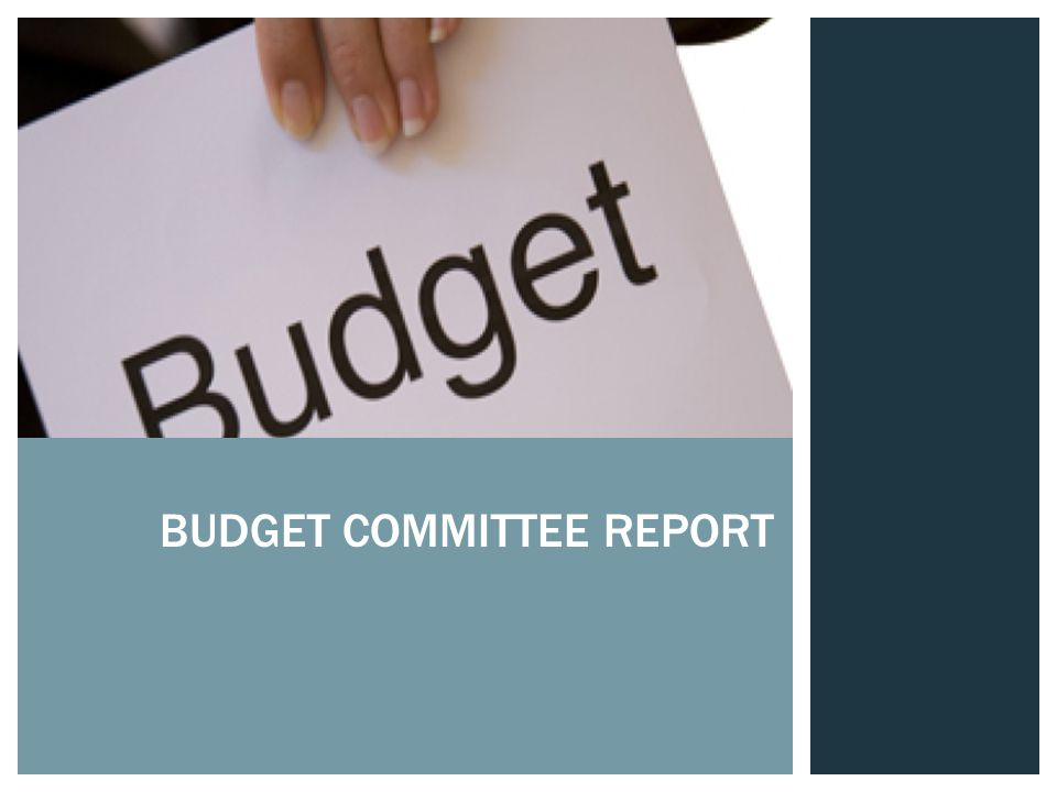 BUDGET COMMITTEE REPORT