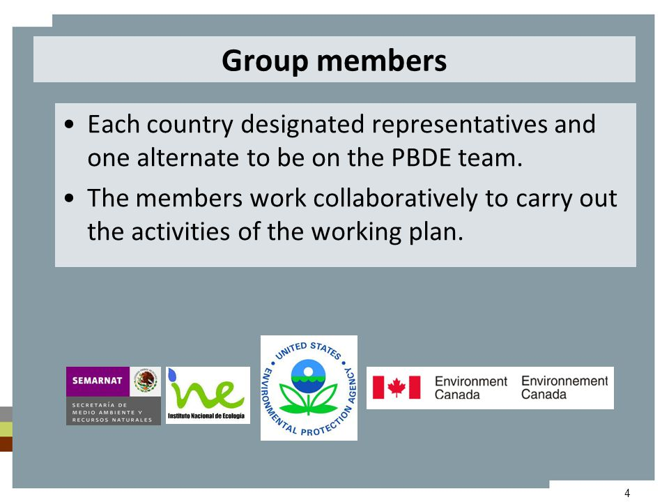 4 Group members Each country designated representatives and one alternate to be on the PBDE team. The members work collaboratively to carry out the ac