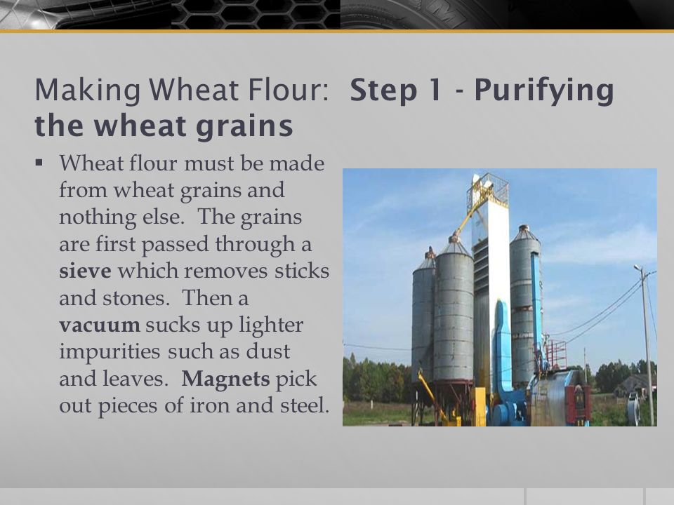 Making Wheat Flour: Step 1 - Purifying the wheat grains  Wheat flour must be made from wheat grains and nothing else.