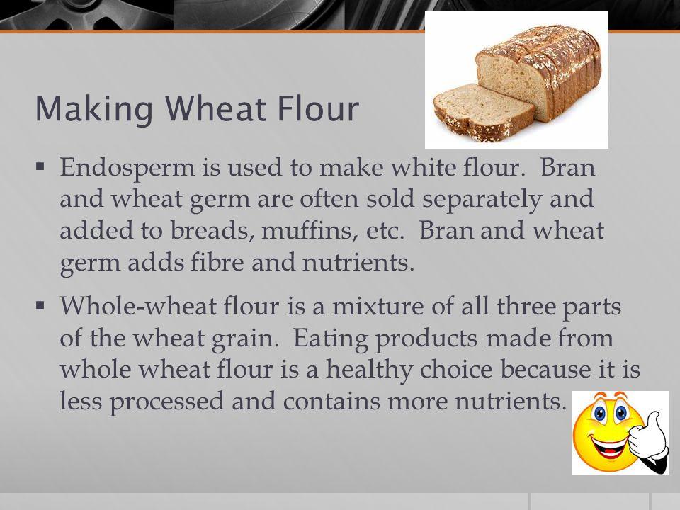 Making Wheat Flour  Endosperm is used to make white flour.