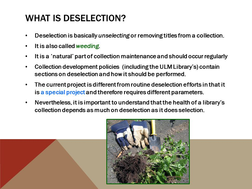 DISPOSITION OF TITLES, CONTINUED Therefore, the Library has two options when it comes to dealing with titles which will NOT be retained: offer them to the public *OR* discard.
