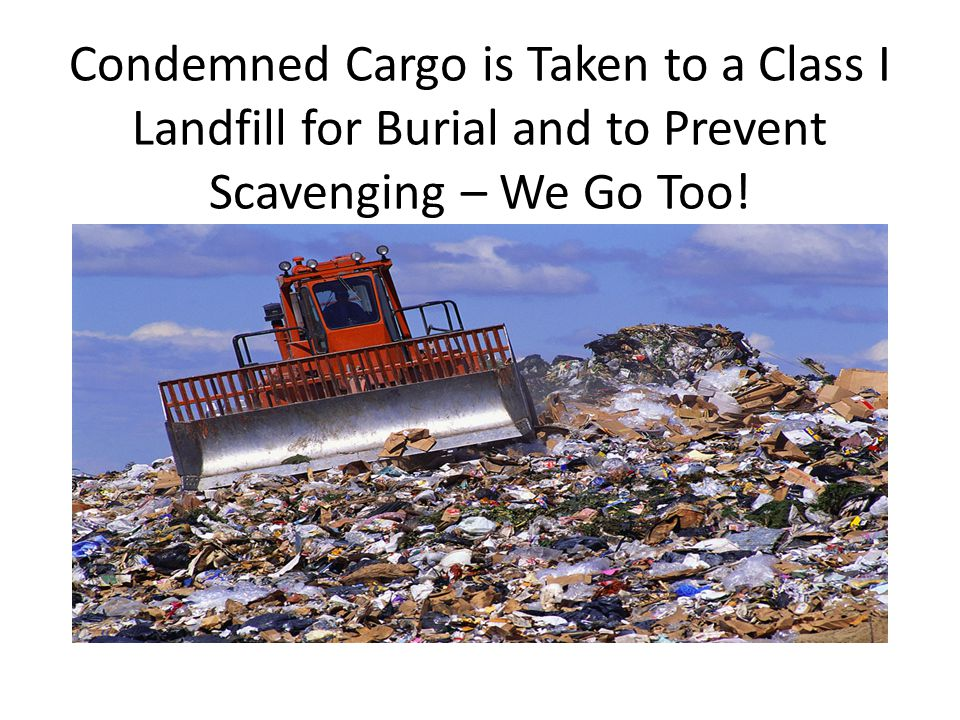 Condemned Cargo is Taken to a Class I Landfill for Burial and to Prevent Scavenging – We Go Too!