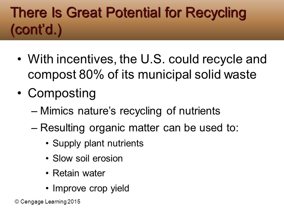 © Cengage Learning 2015 With incentives, the U.S. could recycle and compost 80% of its municipal solid waste Composting –Mimics nature's recycling of