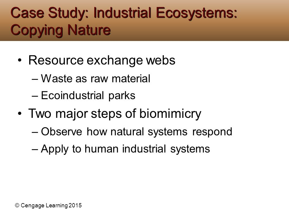 © Cengage Learning 2015 Resource exchange webs –Waste as raw material –Ecoindustrial parks Two major steps of biomimicry –Observe how natural systems