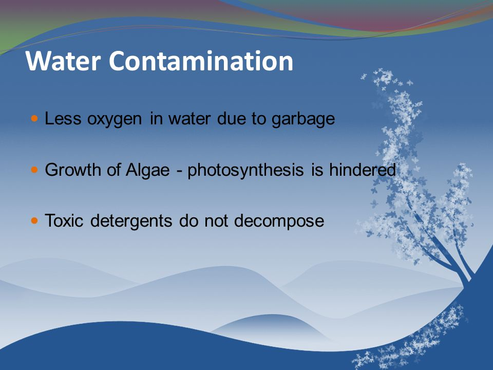 Water Contamination Less oxygen in water due to garbage Growth of Algae - photosynthesis is hindered Toxic detergents do not decompose