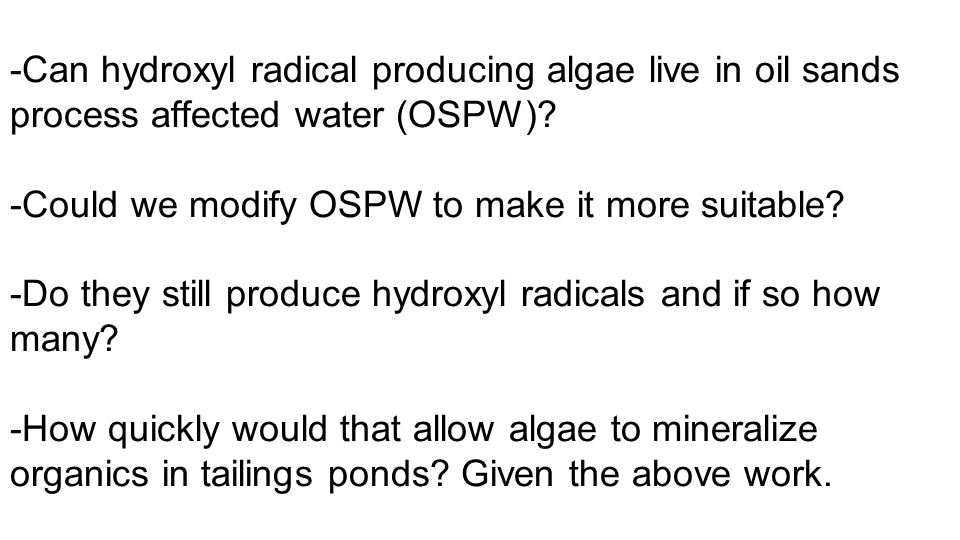 -Can hydroxyl radical producing algae live in oil sands process affected water (OSPW).