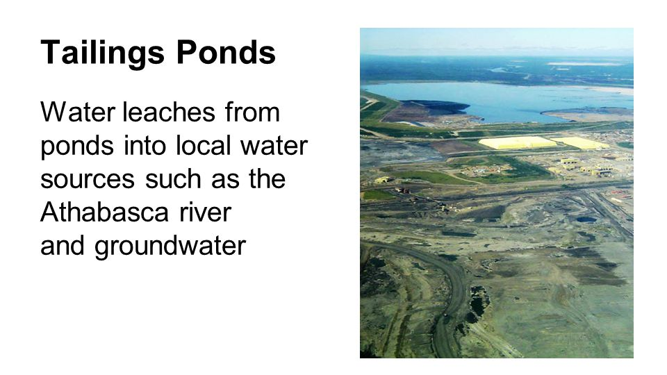 Tailings Ponds Water leaches from ponds into local water sources such as the Athabasca river and groundwater
